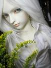 serene_185