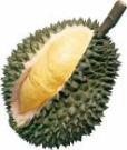eweyan_durian